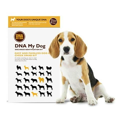 DNA My Dog Testing Kit